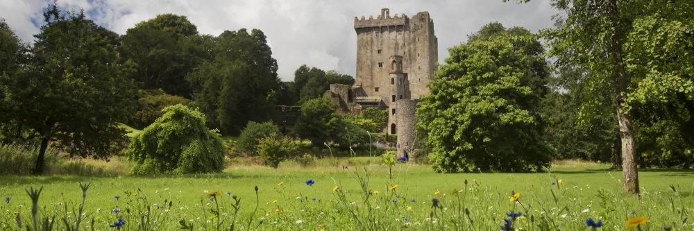 Ireland Castle Tour destination, Blarney Castle