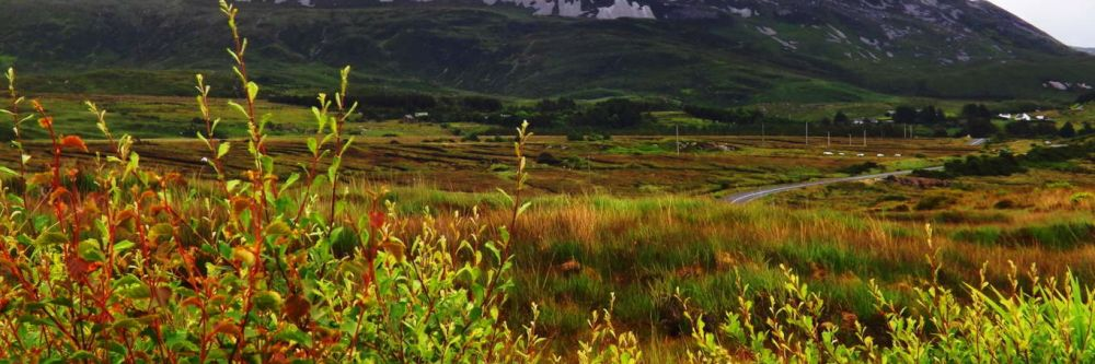 Errigal Mountain, County Donegal