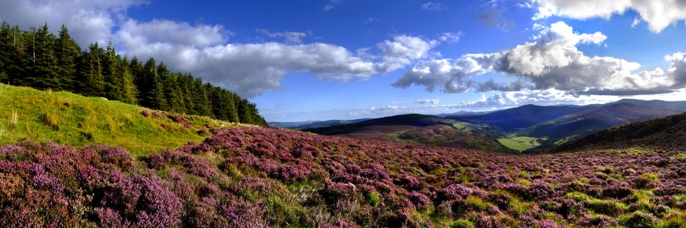 The Wicklow Mountains in East Ireland